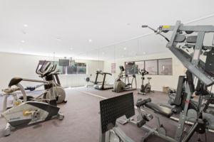 SL8 - Gymnasium