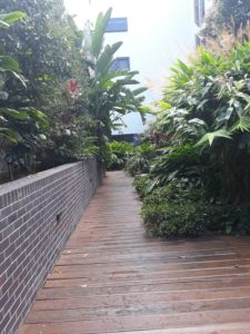 Green Space Ivy Terrace - Woolloongabba